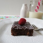 brownies 039