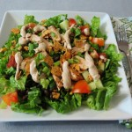 BBQ Chicken Salad 024ooa