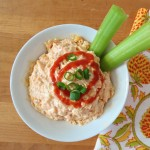 chicken wing dip 014a