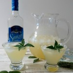 Cinco De Mayo Party with Sauza-Rita