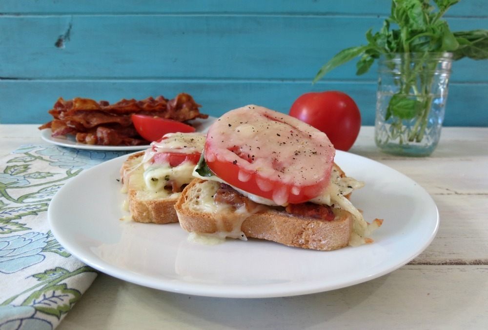 Tomato And Melted Cheese Open Faced Sandwich Recipes — Dishmaps