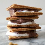 Smore Ice Cream Sandwich / Weekly Recap 07/27/2013