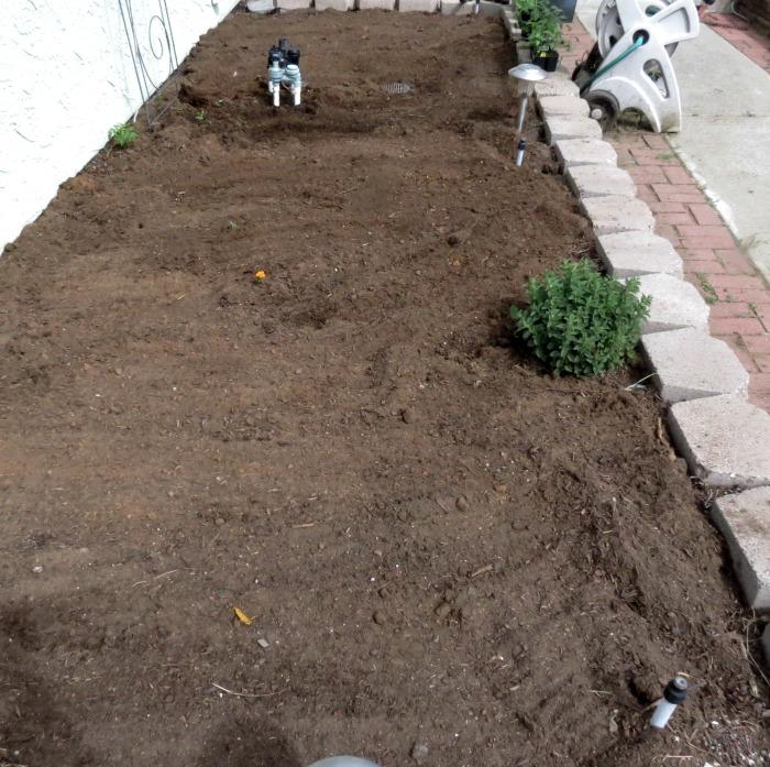 Vegetable Garden - Spring