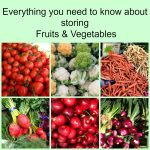 Everything You Need to Know About Storing Fruits & Vegetables