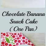 Chocolate Banana Snack Cake (One Pan)